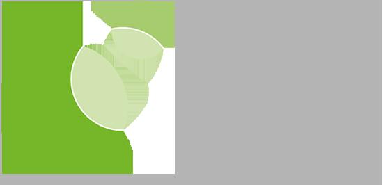 logo dr. niklas david